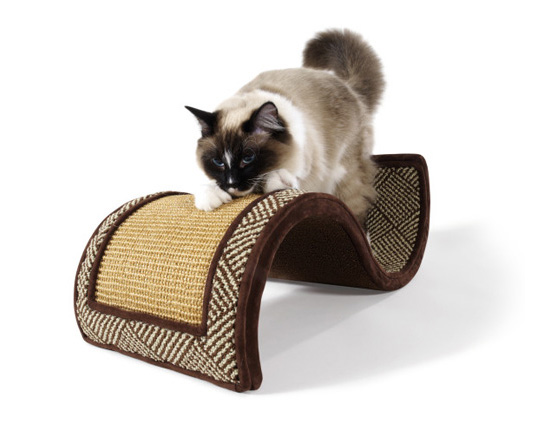 Dream Curl Cat Scratcher