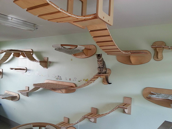 Amazing German Designed Cat Climbing Furniture Hauspanther