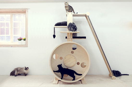 check out these incredible cat towers from korean company catwheel theyu0027re actually more like complete jungle gyms with platforms ramps scratchers - Cat Jungle Gym