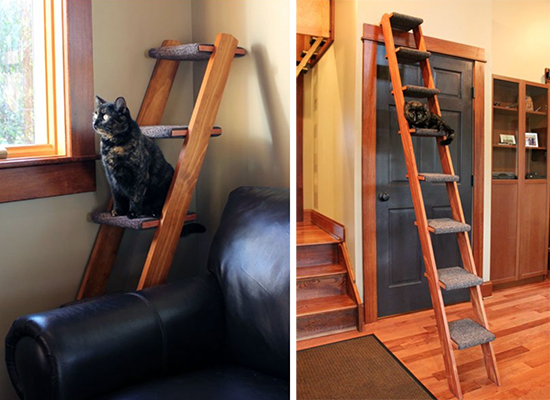 Give Kitty Her Own Ladder To Climb Hauspanther
