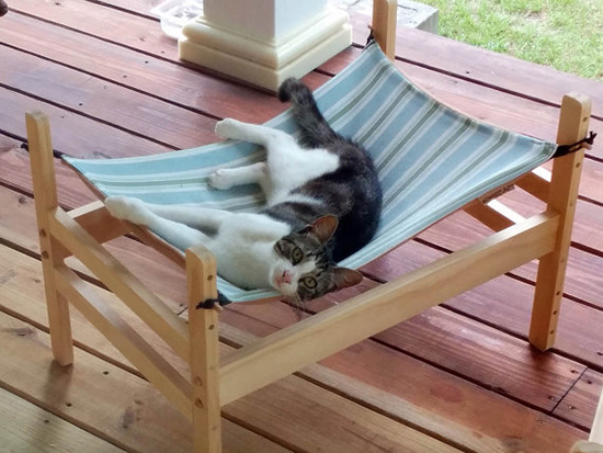 woweepetcathammock3 wowee pet wooden cat hammock with double decker option  u2022 hauspanther  rh   hauspanther