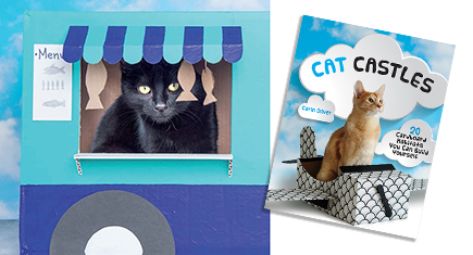 DIY Cat Projects! Cat Castles by Carin Oliver